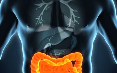 5 Major Contributions to Good Colon Health Naturally